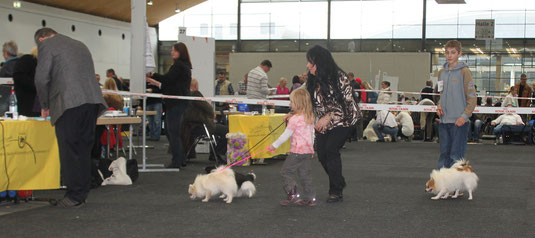 Jessica wollte unbedingt Ihren Hund selbst vor führen, obwohl sie erst vier Jahre ist.