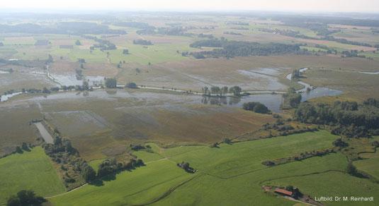 Luftbild: Streuwiesen mit der LBV-Fläche. (August-Hochwasser 2005).