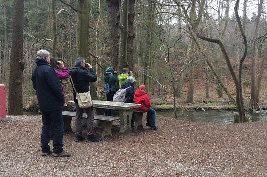 2. Exkursion - auf der Suche nach der Wasseramsel