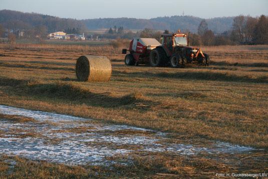 Landschaftspflege durch Landwirte