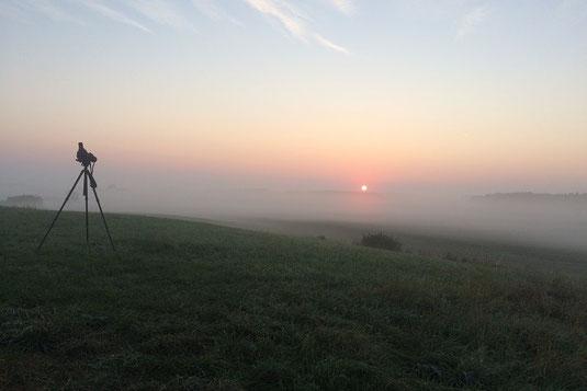 Morgenstimmung am Höhenberg (Foto: Pit Brützel)