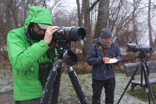 Wasservogelzählung im Schneetreiben (Foto: Andreas Fischer)