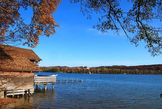 Blick von Hechendorf auf Seefeld am Ostufer (Foto: Boschfoto; CC BY-SA 3.0)