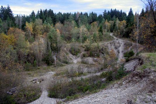 Schreinergrube im ehemaligen Pionierübungsgelände Krailling (Foto: Klaus Gottschaldt)