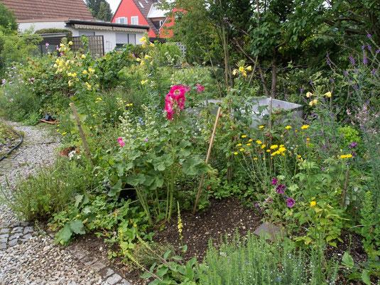 Naturnah gestaltete Gärten können den Verlust an insektenfreundlichem Lebensraum etwas kompensieren. Die Gesamtfläche aller mitteleuropäischen Gärten ist etwa dreimal größer als die Summe aller Naturschutzgebiete! (Bild: Karin Mengele).