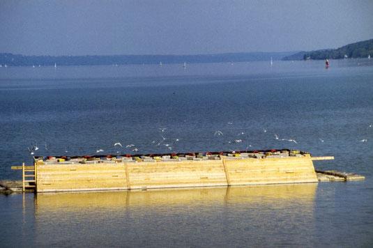 Das erste Flussseeschwalbenfloß am Starnberger See (Foto: Heri Zintl)