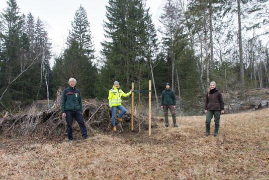 Elsbberenpflanzung - AELF FFB, Stadtwerke FFB, LBV Starnberg