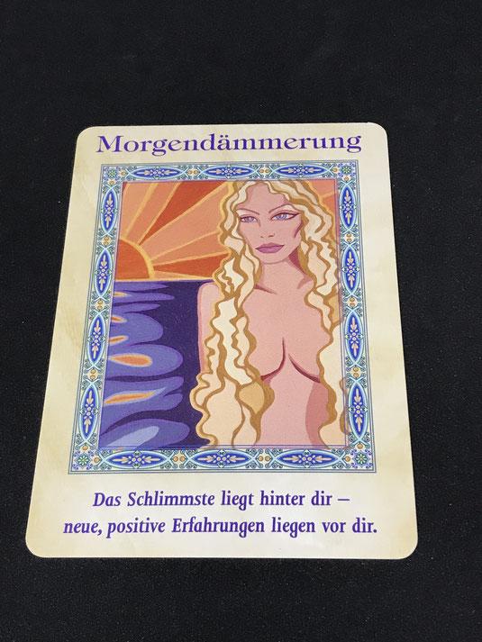 Der Zauber der Meerjungfrauen und Delfine von Doreen Virtue auf Phönixzauber kostenlose Tagesbotschaft