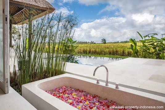 South Ubud villa for sale including a rental license and management
