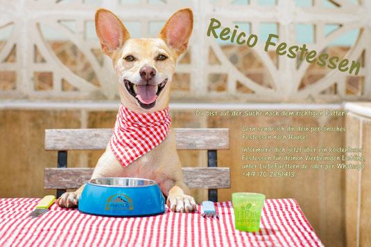Reico Festessen - das Testessen für Hunde und Katzen von Reico
