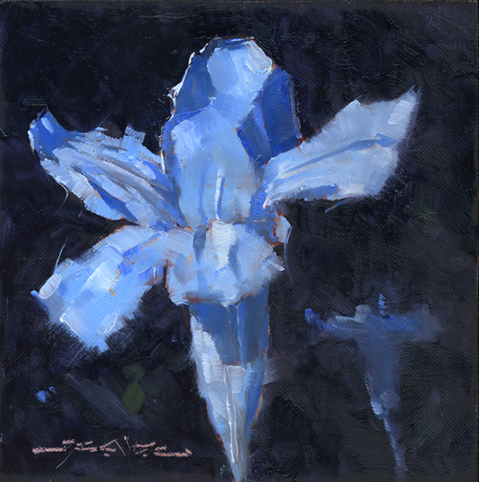 Common Wild Petunia - 6x6-inch oil on canvas panel.