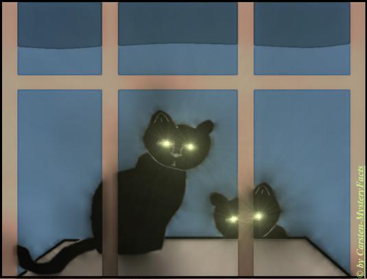 """Die Beschattung durch Aliens kann auch in """"fast"""" irdischer Gestalt ablaufen. Die am meisten berichteten Beispiele sind Kidnapper, in Form von Katzen, die warten, bis ihr Opfer eingeschlafen ist und sie ins Haus eindringen können."""