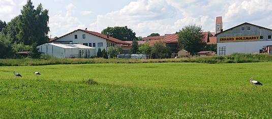Neuer Schnappschuss aus Dirlewang - Erster Familienausflug Foto: Sascha Padotzke