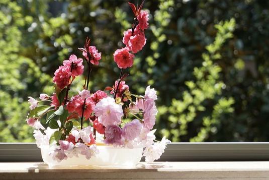 窓辺に飾られたフラワーアレンジメント。ピンクの桜。