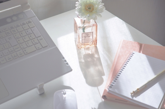自宅のソファでノートパソコンを広げてリモート会議。デニムにピンクのシャツ姿の女性。観葉植物の鉢植えが置かれた丸テーブルに広げられた資料とスマホ。マグカップ。