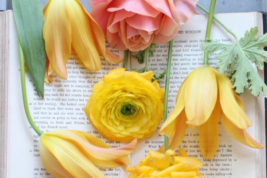 デスクに置かれた茶革の手帳とメモ帳、ボールペン。セルロイドフレームの眼鏡、置時計。観葉植物のつる。