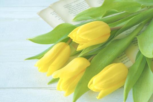 デスクに広げられたメモ帳。紫とピンクのボールペン。水色のビーズでデコレーションされた電卓。赤のフリージア。
