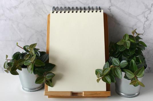 高台から朝もやのかかったビルの街並みを見下ろす。緑の木々。