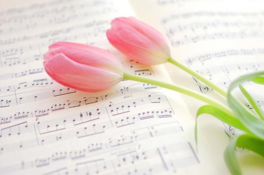 トレイにのせられたコーヒー。広げられたノートとシャープペンシル。黒ぶちの眼鏡。ガラスの小瓶に活けられたマーガレットの花。