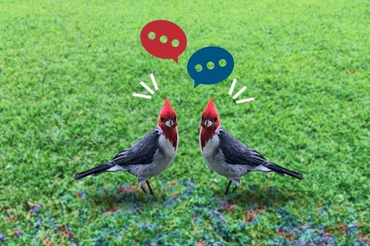 オフィスのオープンスペースでノートパソコンを広げながらスマホで会話するビジネスウーマン。紺のジャケット姿。