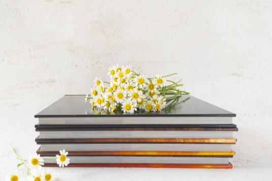 積み重ねられた図鑑のうえに無造作に置かれたマーガレットの花たち。