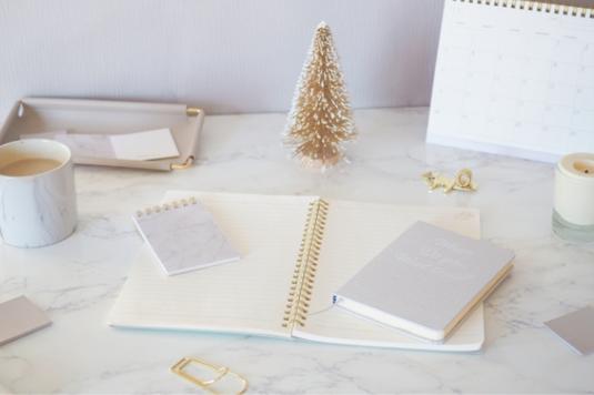 デスクに広げられた2冊のリングノートとボールペン。ゴールドのゼムクリップ。