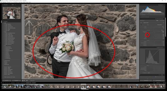 Liegt der Regler Lichter auf -100, so werden alle Falten und Detail auf weißen Flächen sichtbar. Dies ist zum Beispiel bei Hochzeitsfotos sehr wichtig. Weiße Flächen und Details vom Hochzeitskleid oder am weißen Hemd beim Bräutigam werden hervorgehoben.