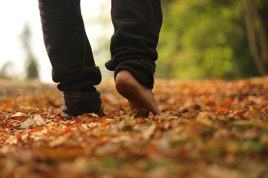 Der achtsame Spaziergang
