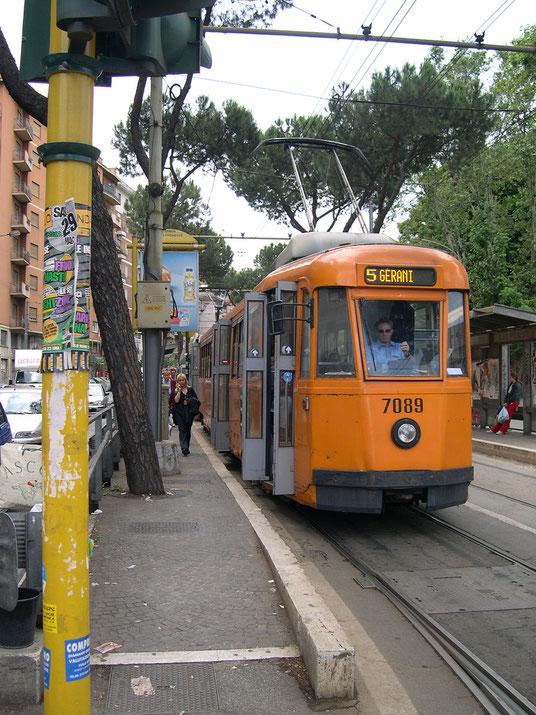 tram (Jordi Motllò)