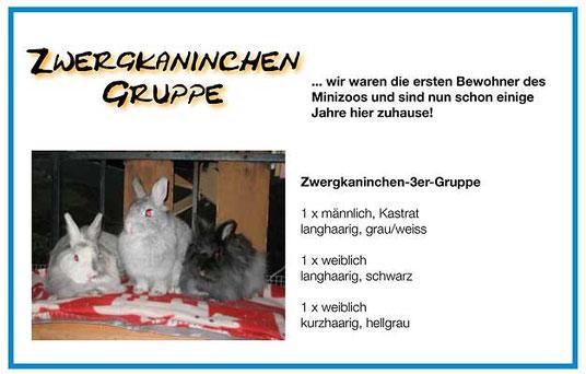 Plakat Minis vom 05.2009