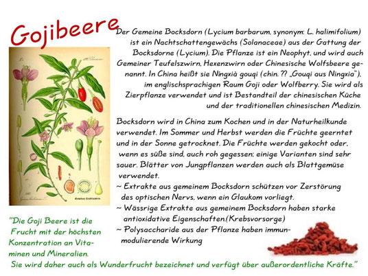 Gojibeere, wolfberry