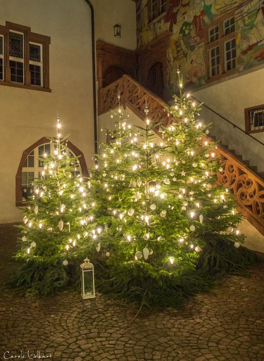 Wunderschön geschmückte Weihnachtsbäume im Rathaus-Innenhof von Rheinfelden