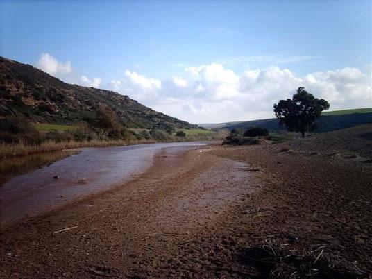 La rivière Camérata
