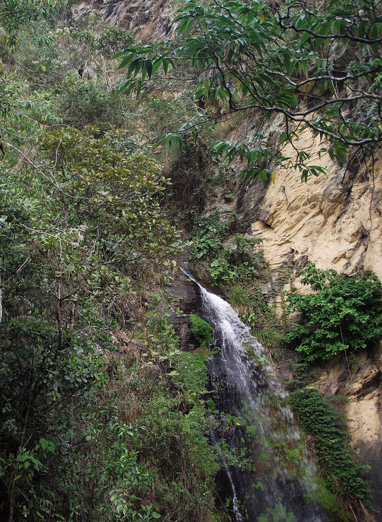 Waterfall in Coiroco, Yungas, Bolivia