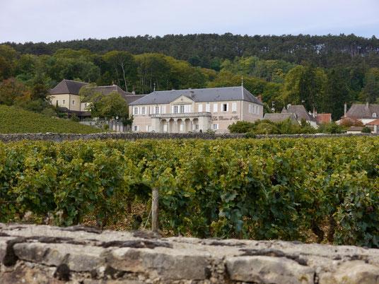 miss ellies reise blog frankreich , beaune im burgund