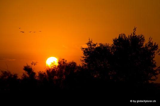 Sonnenuntergang irgendwo zwischen Almaty und Astana bei unserem Übernachtungsplätzli