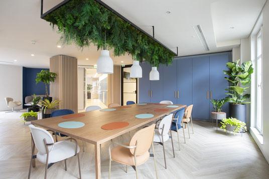 Location de plantes vertes pour décorer vos bureaux à La Defense