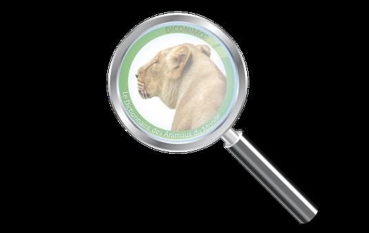 moteur de recherche animaux du monde diconimoz