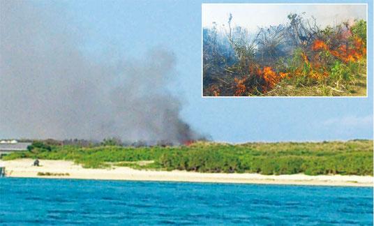 嘉弥真島で火災が発生した(26日午後、町提供)
