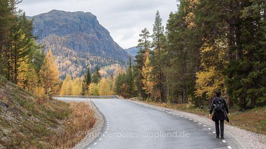 Wir gehen ein-, zweihundert Meter die Straße aufwärts, um dann rechts der Straße einem schmalen Pfad entlang des Baches Årrejåkkå zu folgen. Vor uns der Kassavare.