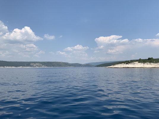 Kroatien, Istrien, Trget Fjord, Rasa
