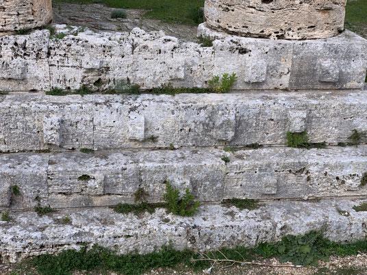 Italien, Sizilien, Sehenswürdigkeit, Segesta, griechischer Tempel, Säulen, Ausgrabungsstätte, historische Stätte, Bossenquader