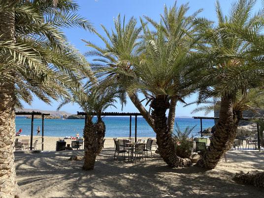 Kreta, Vai, Palmenwald,Beach, Strand
