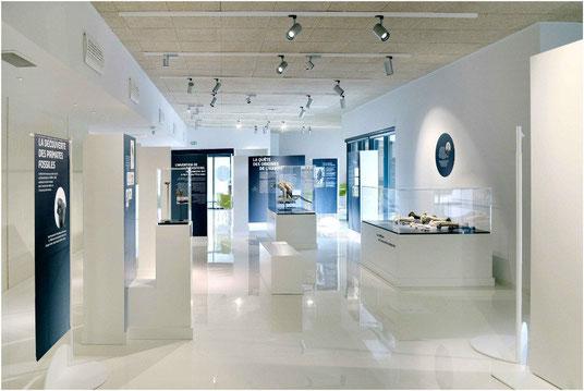 Le musée Forum de l'Aurignacien