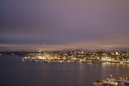 Nächtliches Oslo vom Ekebergpark aus gesehen