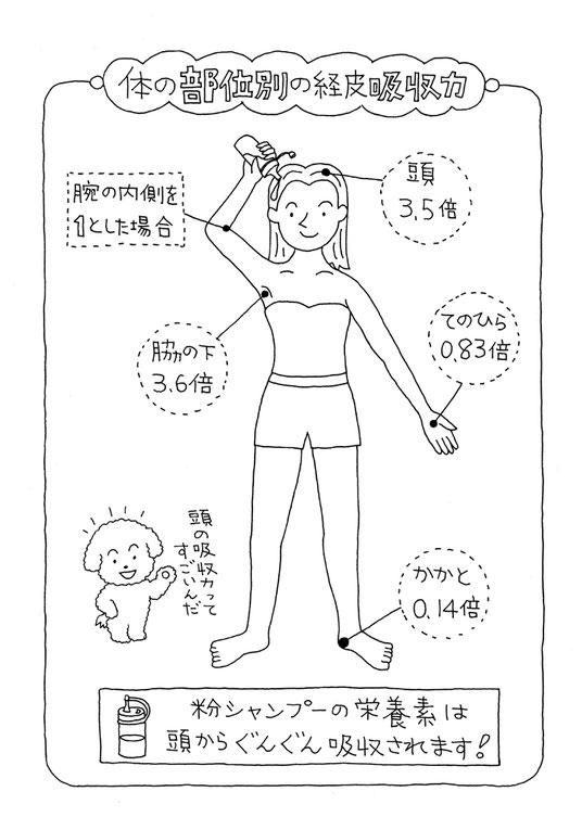 ドライヘッドスパとヘッドスパの違いを解説(経皮吸収の画像)