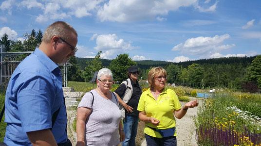 Kräuterwanderung mit fachkundiger Führung rund um den See in Nagel