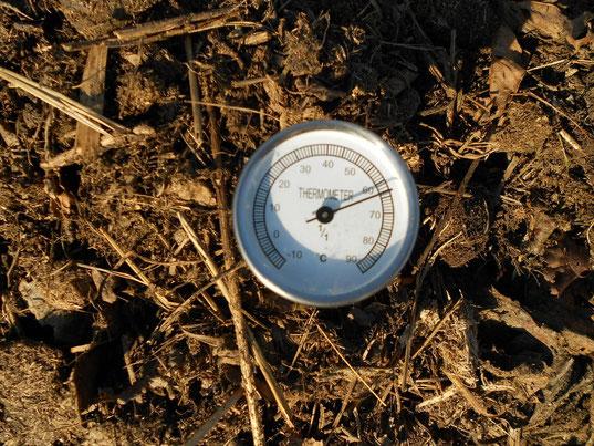 monté en température dans un compostage avancé (a chaud) 63°