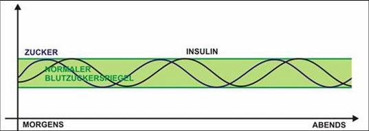 So soll dein Blutzucker- & Insulinspiegel sein!