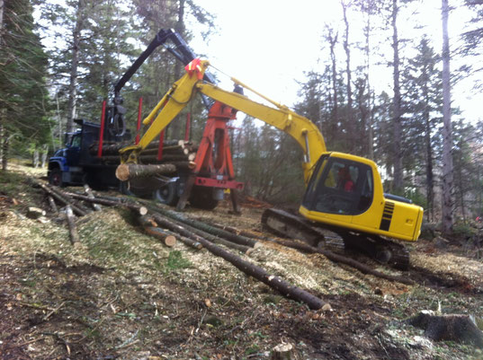 Pelle mécanique et camion de transport forestier
